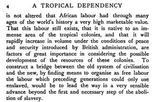 tropical-dependency-05
