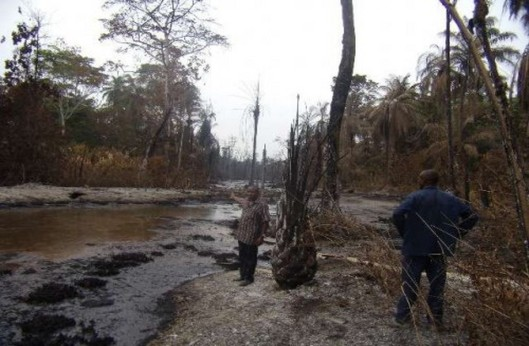 Pollution-in-the-Niger-Delta
